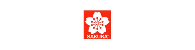 Sakura : Koi