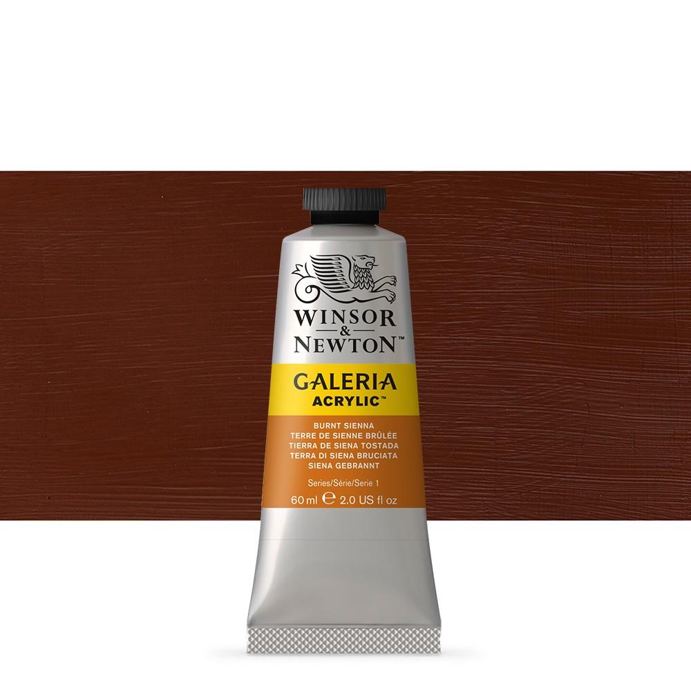 Winsor & Newton : Galeria : Acrylic Paint : 60ml : Burnt Sienna