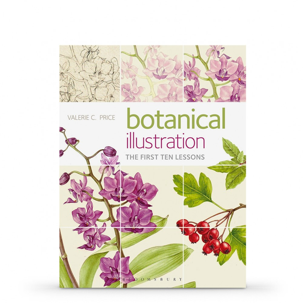 Botanical Illustration: The First Ten LessonsBook byValerie C. Price