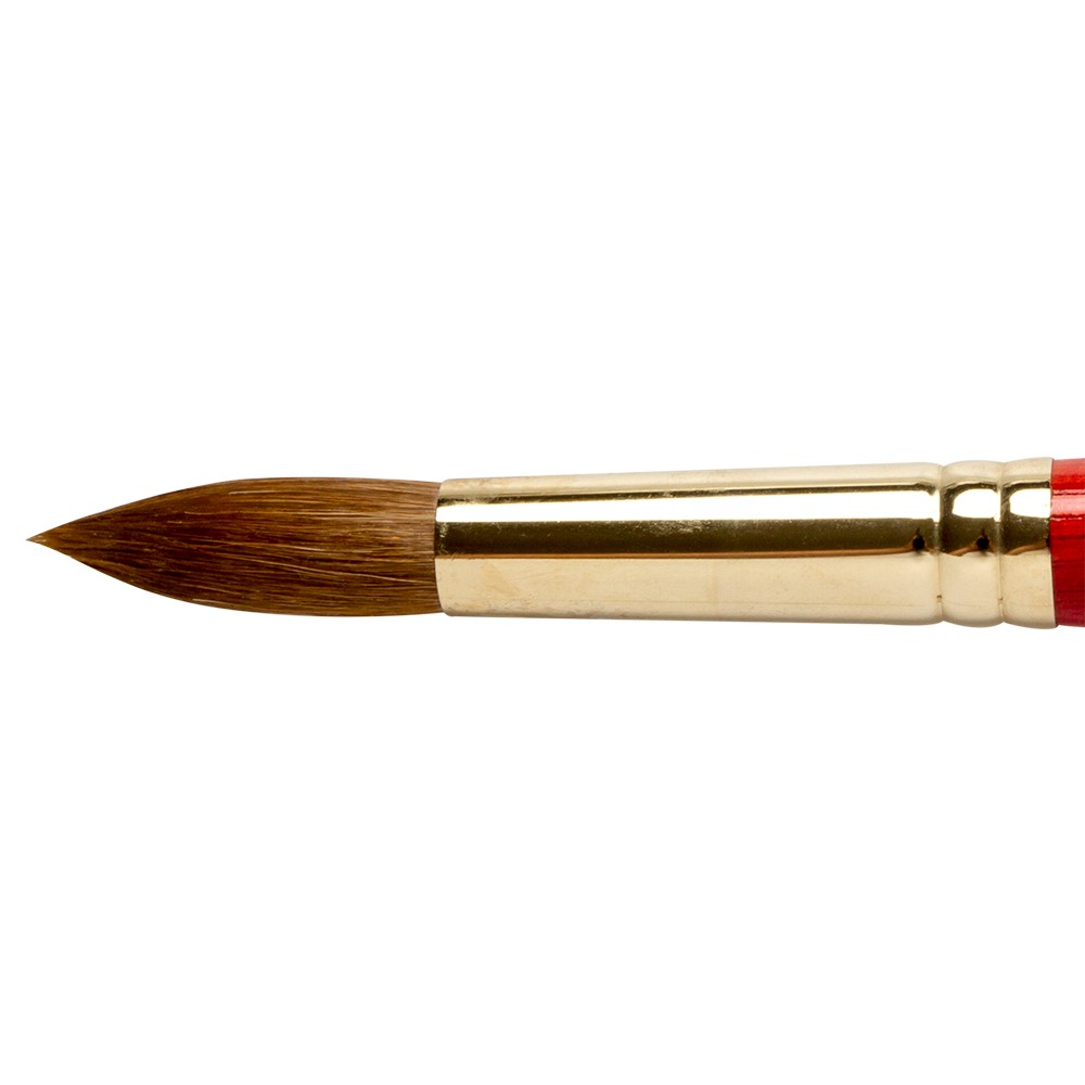 Winsor & Newton : Sceptre Gold Brush : Series 101 : Round No 20