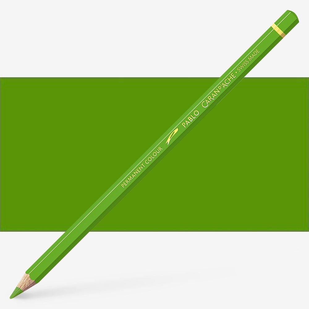 Caran d'Ache : Pablo Coloured Pencil : Khaki Green 016