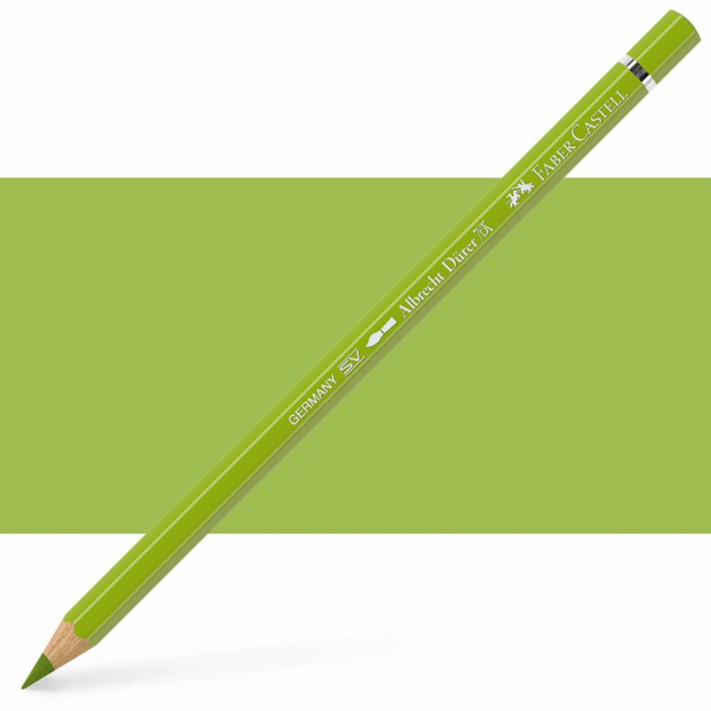 Faber Castell : Albrecht Durer Watercolour Pencil : May Green