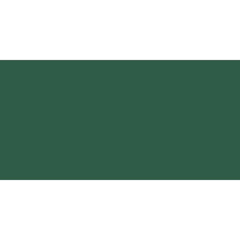 Faber Castell : Polychromos Pencil : Pine Green