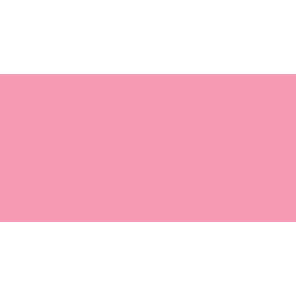ShinHan : Touch Twin Brush Pen : Tender Pink : RP198