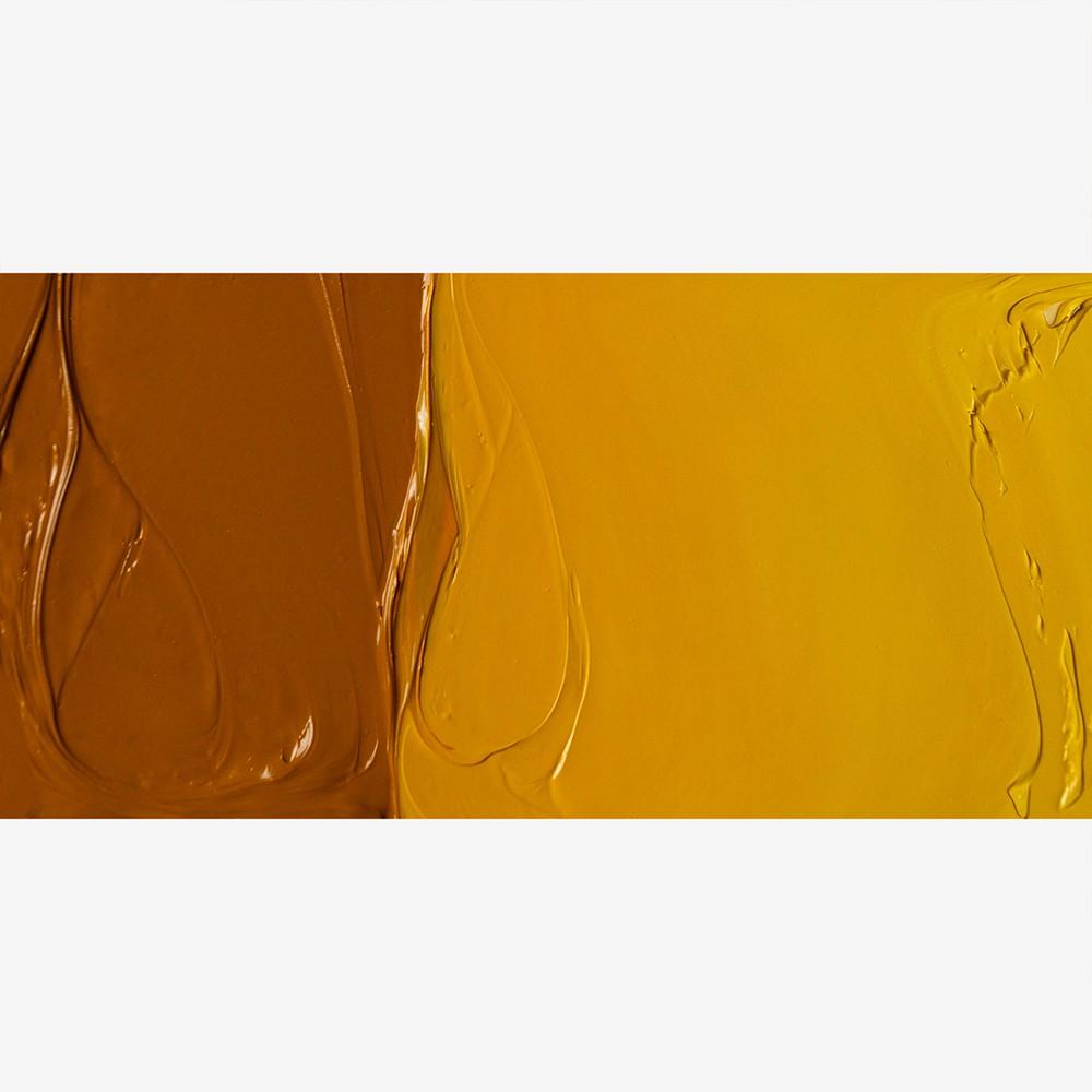 Jackson's : Artist Oil Paint : 225ml : Indian Yellow Hue