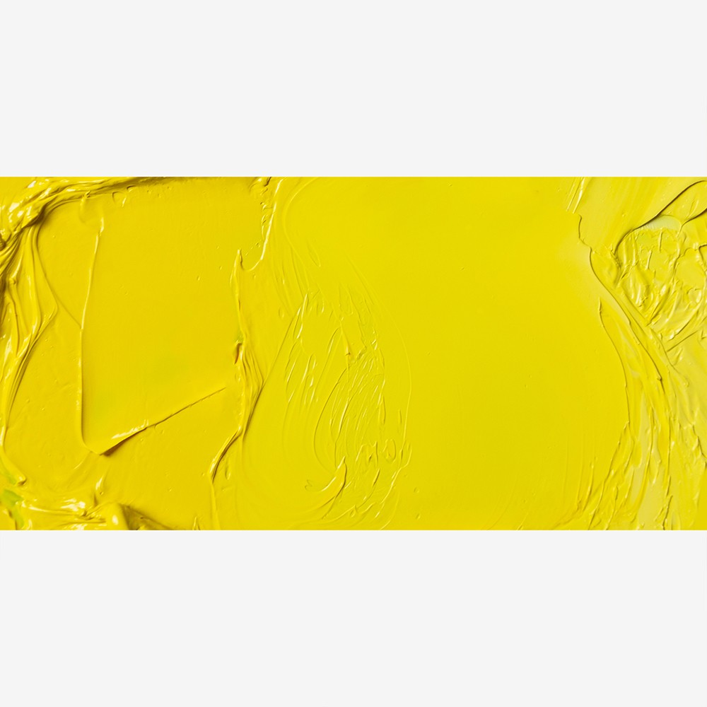 Jackson's : Artist Oil Paint : 60ml : Lemon Yellow