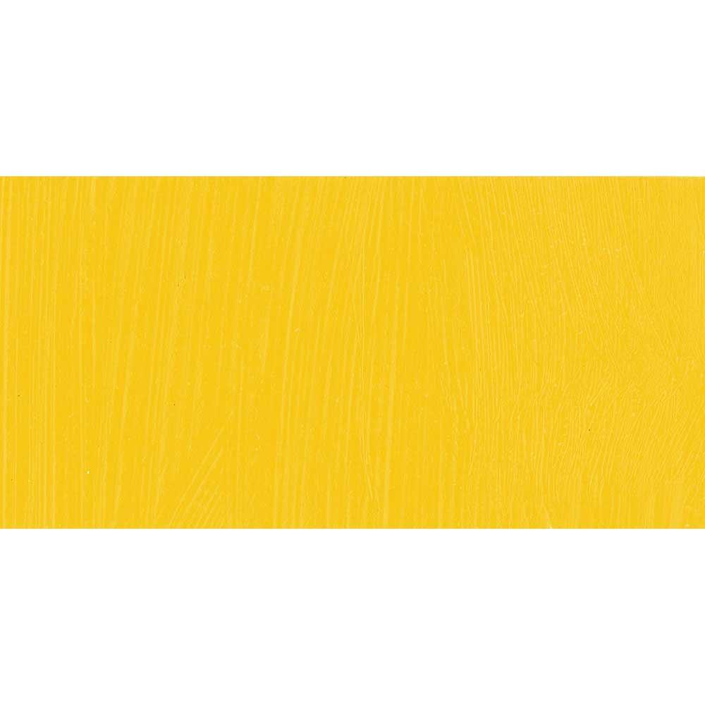 Jackson's : Professional Oil Paint : 225ml : Cadmium Yellow Genuine