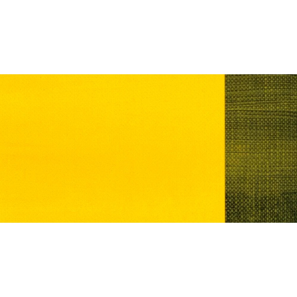 Maimeri : Classico Fine Oil Paint : 60ml : Permanent Yellow Lemon