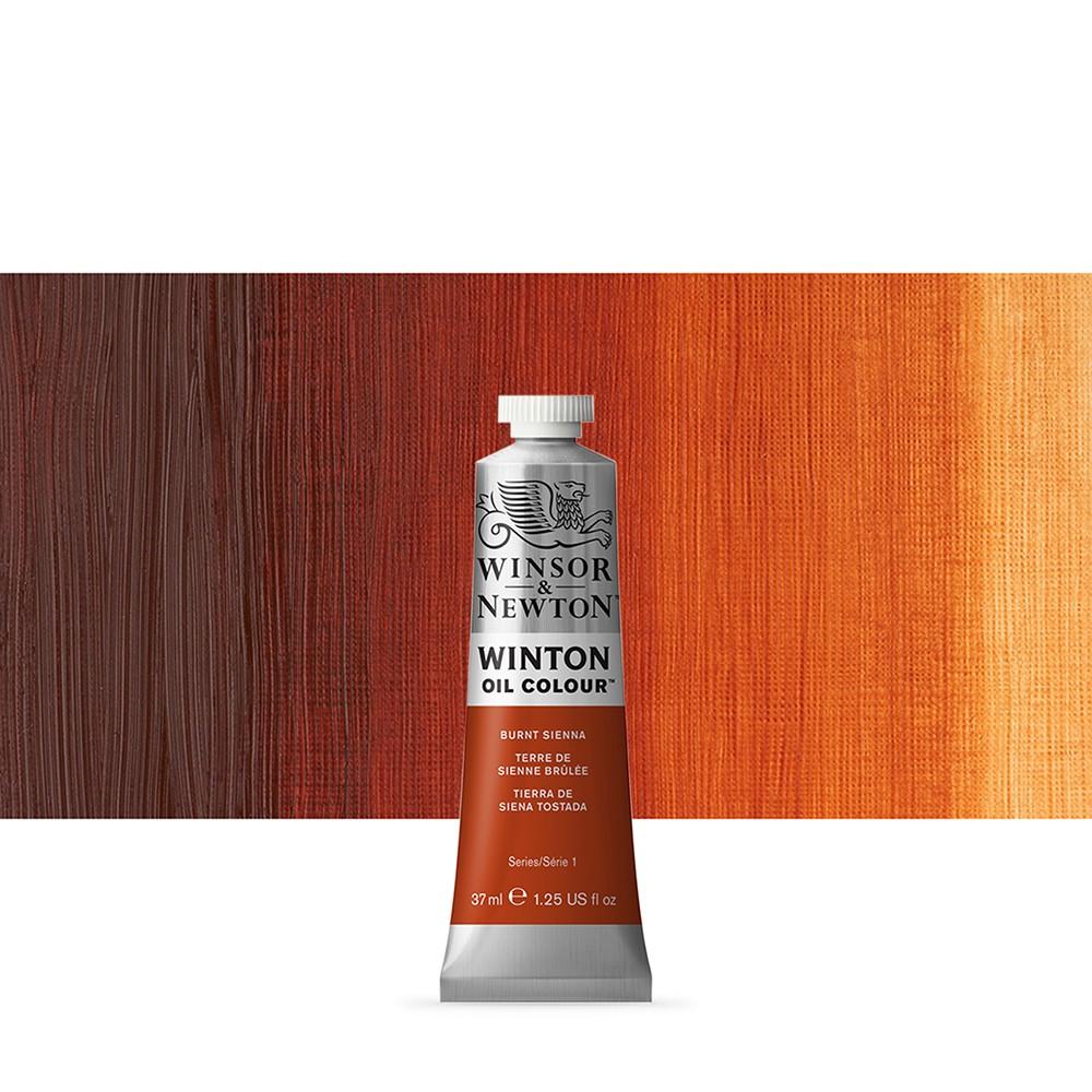 Winsor & Newton : Winton : Oil Paint : 37ml : Burnt Sienna