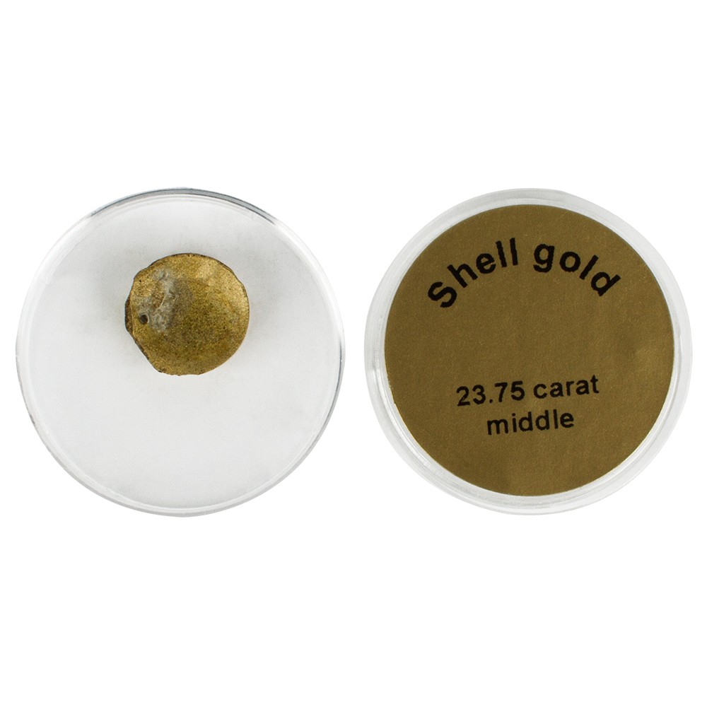 Handover : Shell Gold Watercolour Pan : Gold 23.75 ct : Medium
