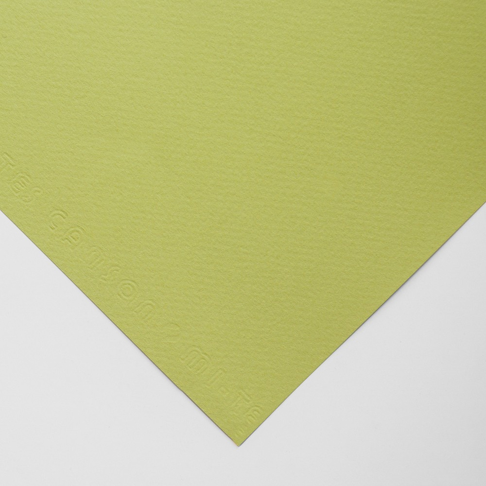 Canson : Mi-Teintes : Pastel Paper : 160gsm : 55x75cm : Light Green
