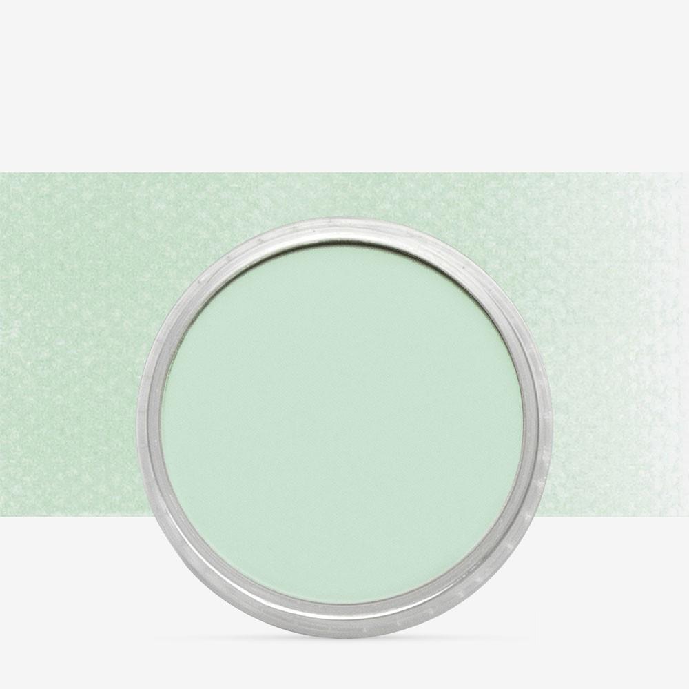 PanPastel : Permanent Green Tint : Tint 8