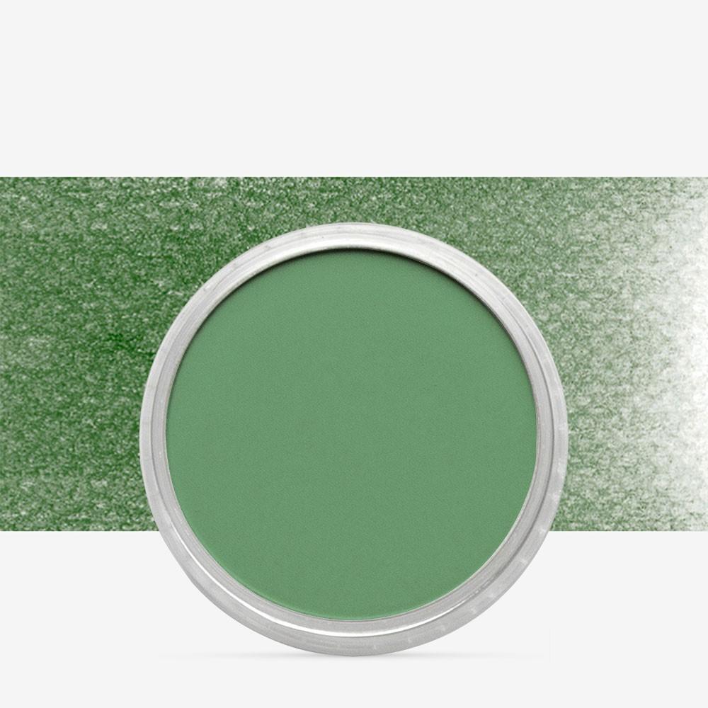 PanPastel : Chromium Oxide Green : Tint 5