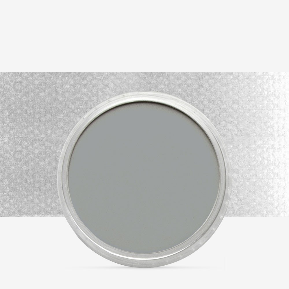 PanPastel : Neutral Grey : Tint 5