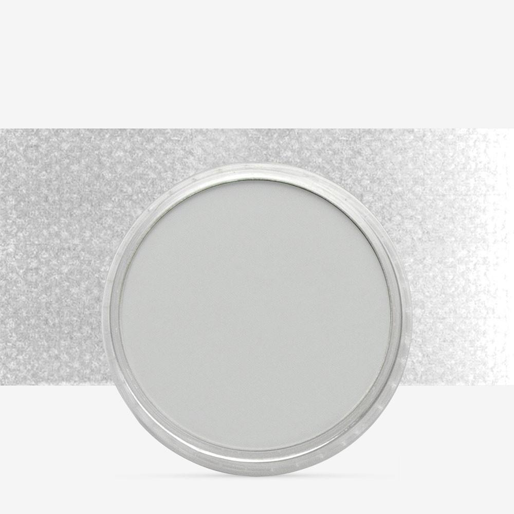 PanPastel : Neutral Grey Tint : Tint 7