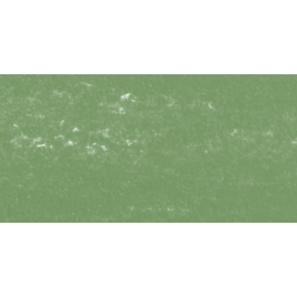 Sennelier : Soft Pastel : Moss Grey Green 172