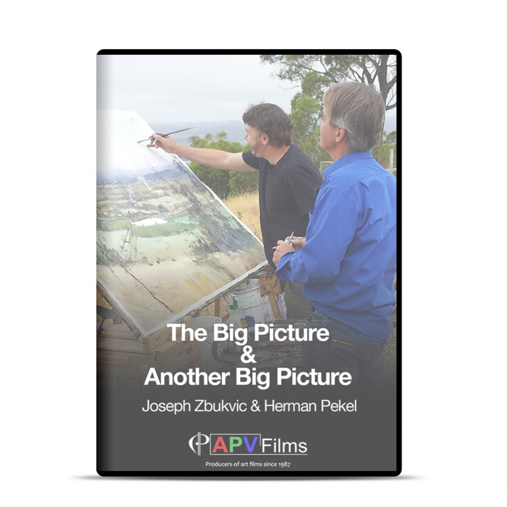 DVD : The Big Picture/Another Big Picture : Herman Pekel