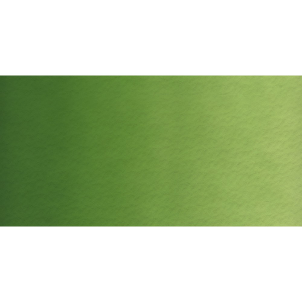 Old Holland : Watercolour 18ml Chromium Oxide Green