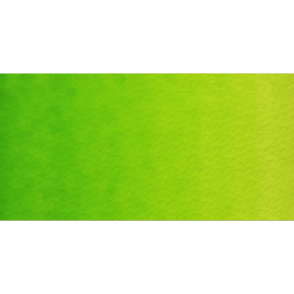 Old Holland : Watercolour Paint : Half Pan : Old Holland : Yellow Green