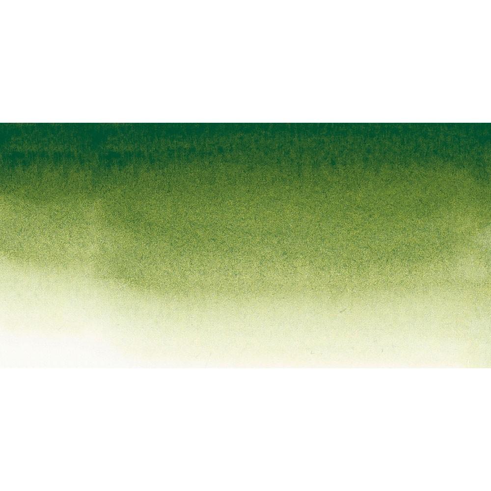 Sennelier : Watercolour Paint : 21ml : Sap Green