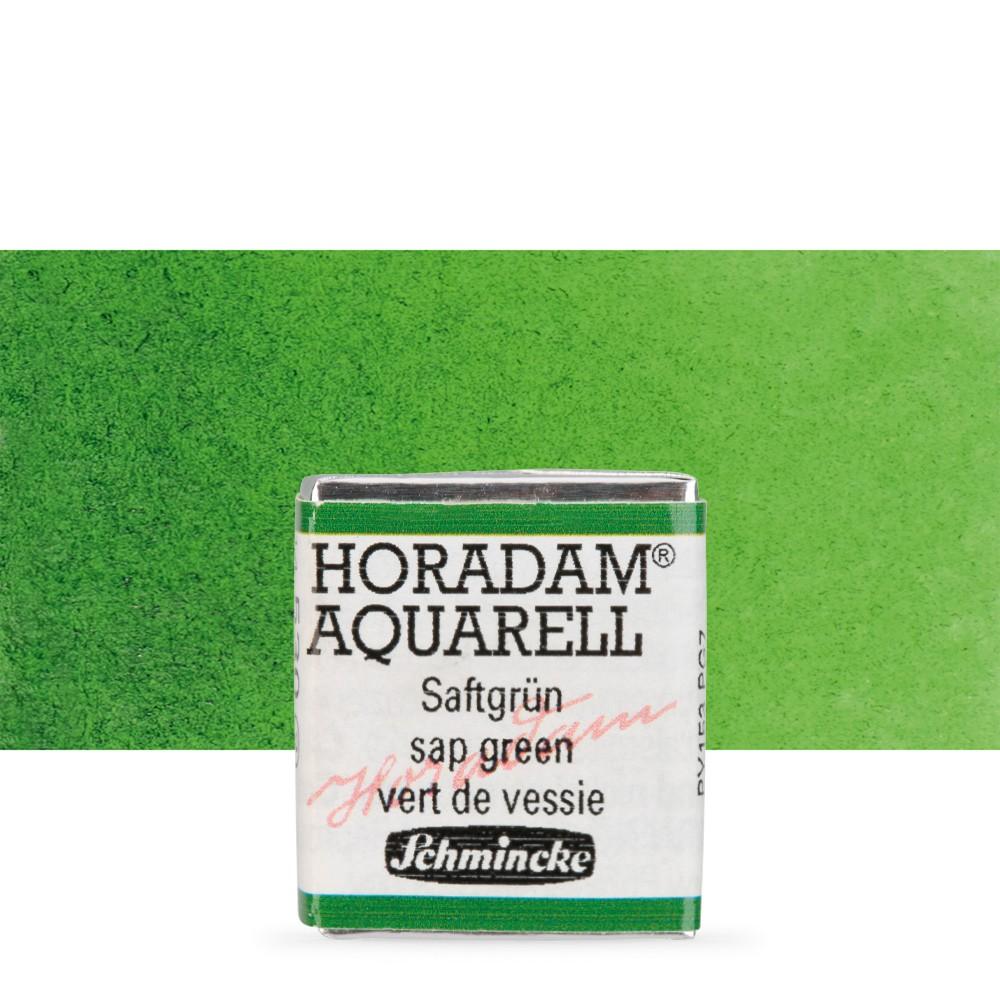 Schmincke : Horadam Watercolour Paint : Half Pan : Sap Green