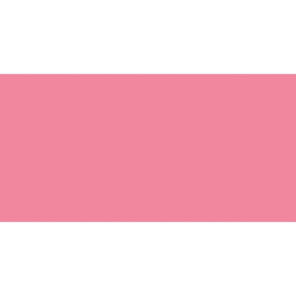 Shin Han : Pass : Watercolour and Gouache Hybrid Paint : 20ml : Brilliant Pink
