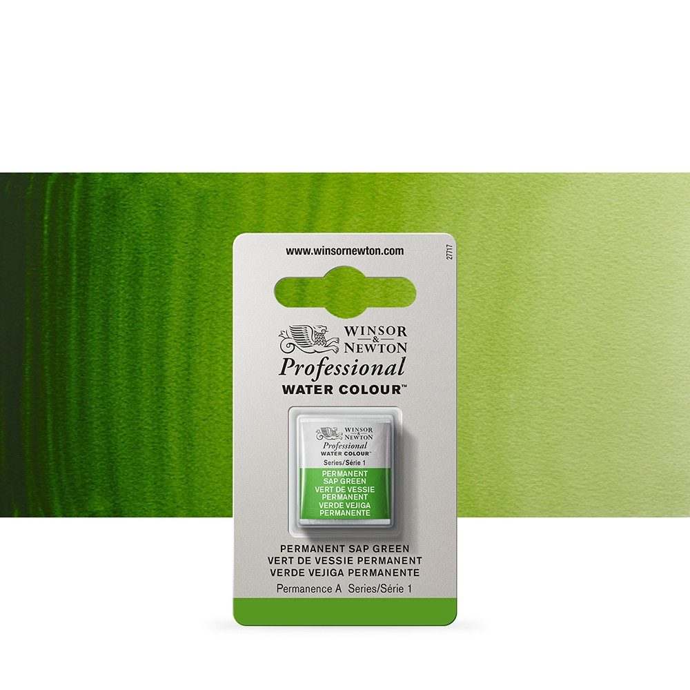 Winsor & Newton : Professional Watercolour Paint : Half Pan : Permanent Sap Green