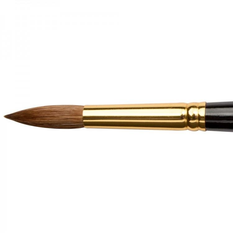 Jackson's : Kolinsky Sable Brush : Round : Size 12