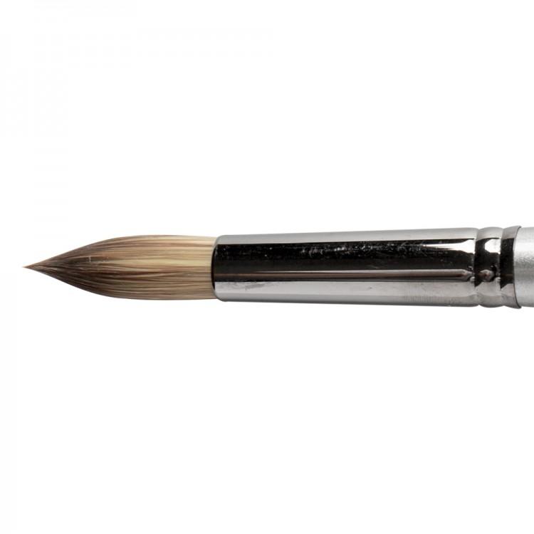 Daler Rowney : Cryla : Series C20 : Long Handled : Round : Size 12
