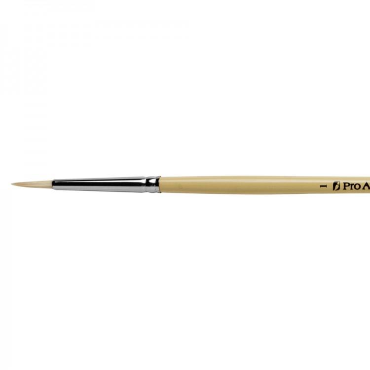 Pro Arte : Series B Hog : Bristle Brush : Round : Size 1