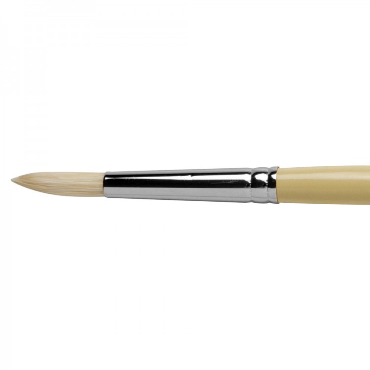 Pro Arte : Series B Hog : Bristle Brush : Round : Size 7