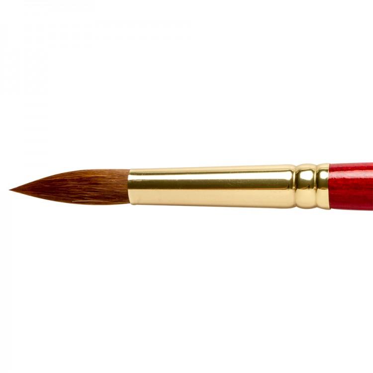 Winsor & Newton : Sceptre Gold Brush : Series 101 : Round No 14