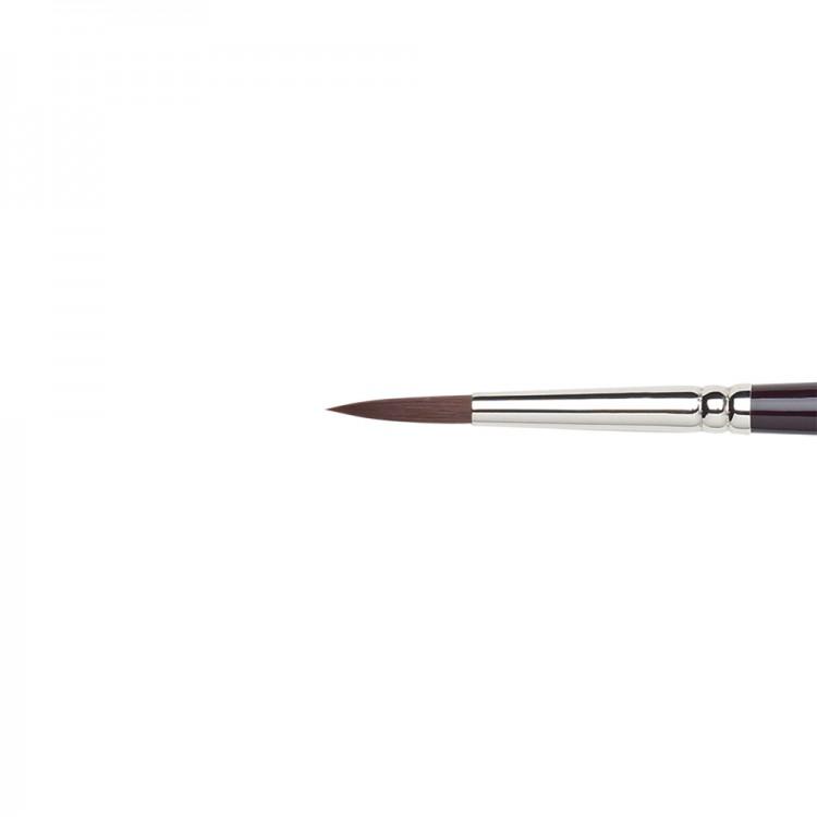W&N : Galeria Brush : Long Handled : Round : No 6