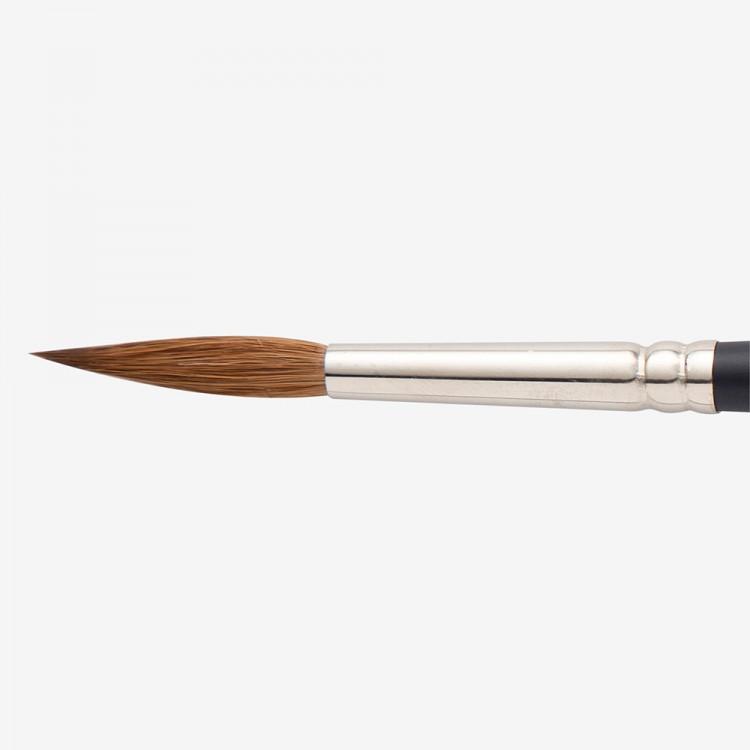 Winsor & Newton : Artist Sable Brush : Pointed Round : No 8