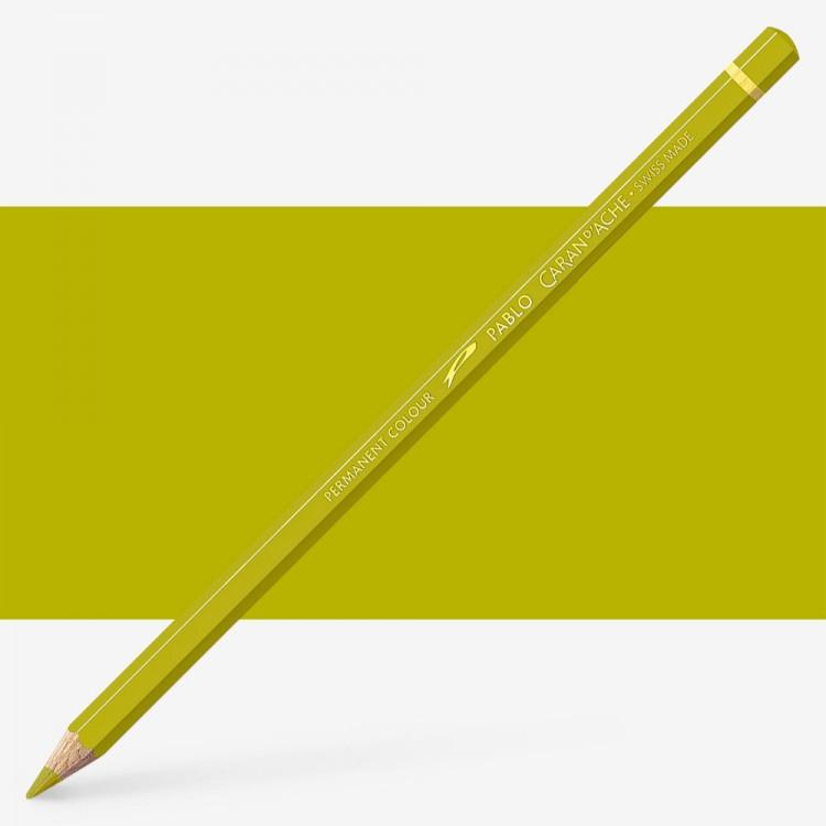 Caran d'Ache : Pablo Coloured Pencil : Olive Yellow 015