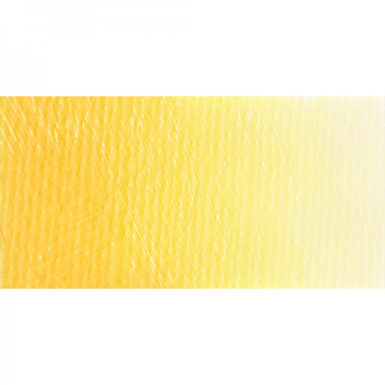 Old Holland : Classic Oil Paint : 60ml : Brilliant Yellow Light