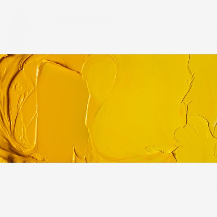 Jackson's : Artist Oil Paint : 225ml : Cadmium Yellow Medium Hue
