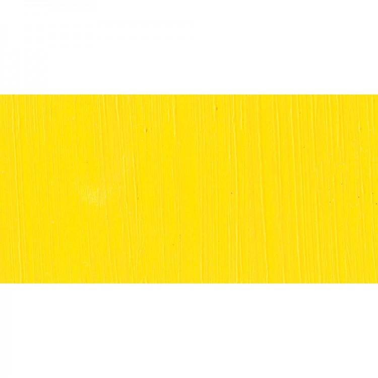Jackson's : Professional Oil Paint : 40ml : Cadmium Yellow Lemon