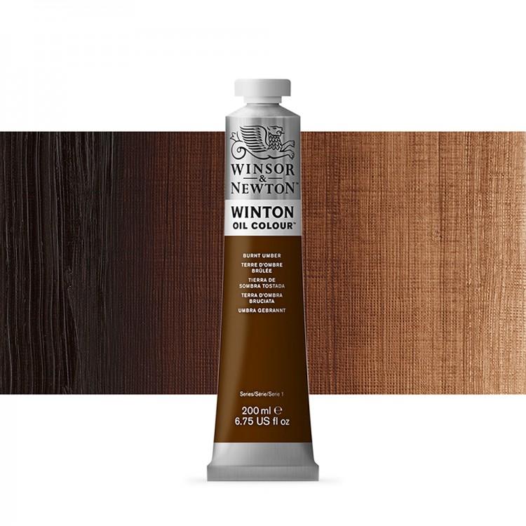 Winsor & Newton : Winton Oil Paint : 200ml : Burnt Umber
