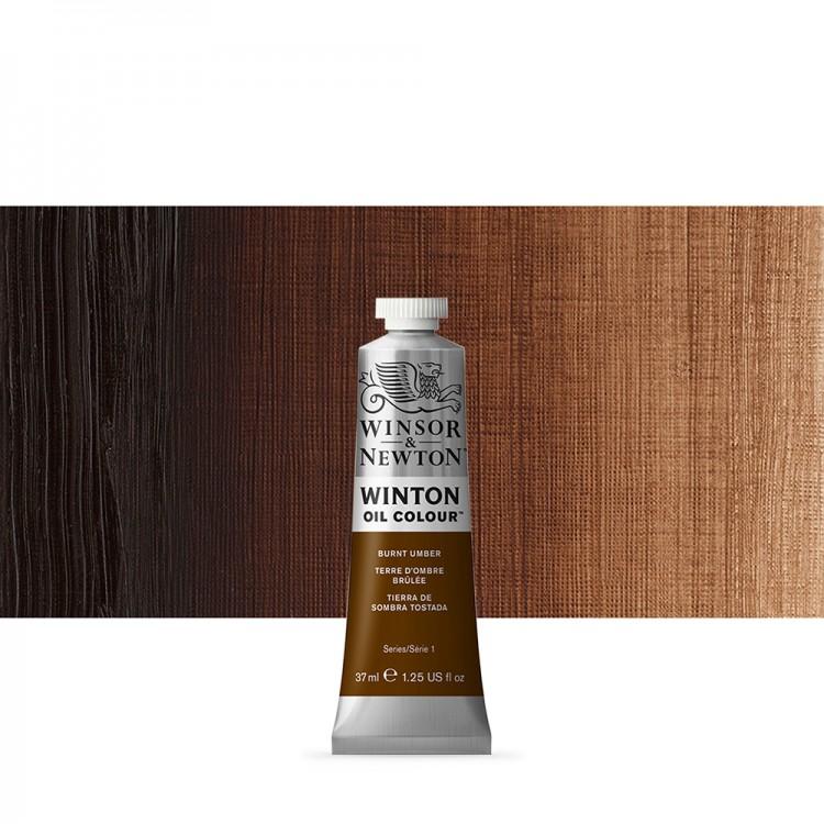 Winsor & Newton : Winton Oil Paint : 37ml : Burnt Umber