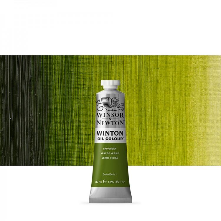 Winsor & Newton : Winton : Oil Paint : 37ml : Sap Green