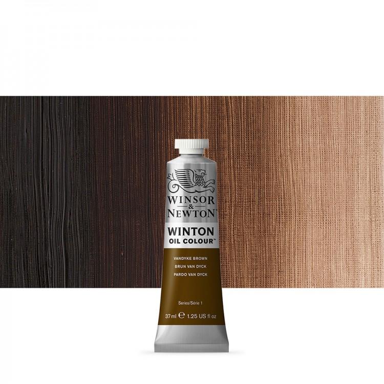 Winsor & Newton : Winton Oil Paint : 37ml : Van Dyke Brown
