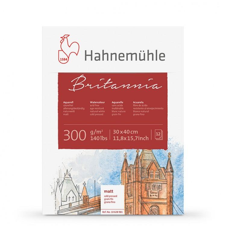 Hahnemuhle : Britannia : Block : 300gsm : 140lb : 30x40cm : 12 Sheets : Not