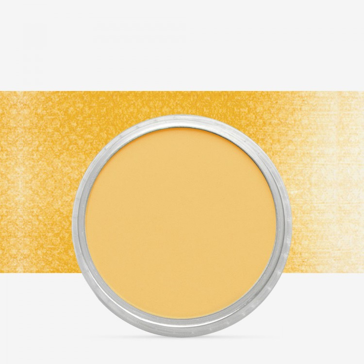PanPastel : Yellow Ochre : Tint 5