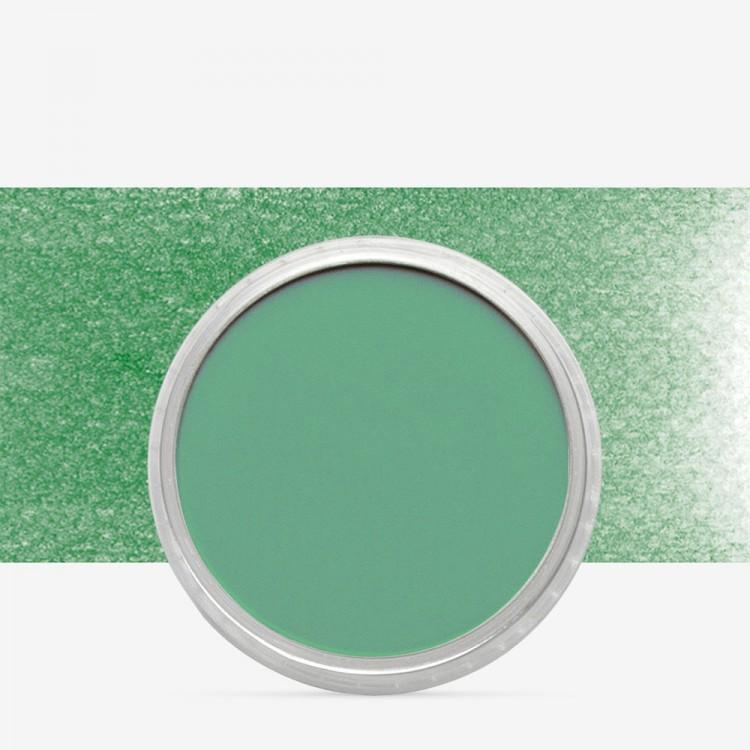 PanPastel : Permanent Green : Tint 5