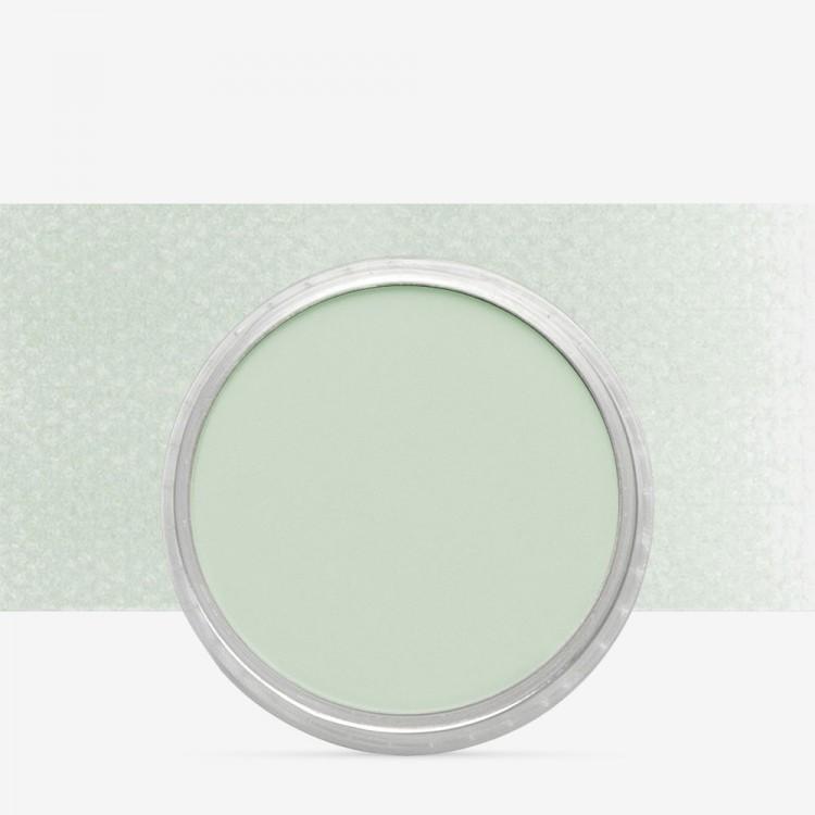 PanPastel : Chromium Oxide Green Tint : Tint 8