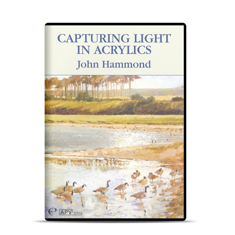 DVD : Capturing Light In Acrylic : John Hammond