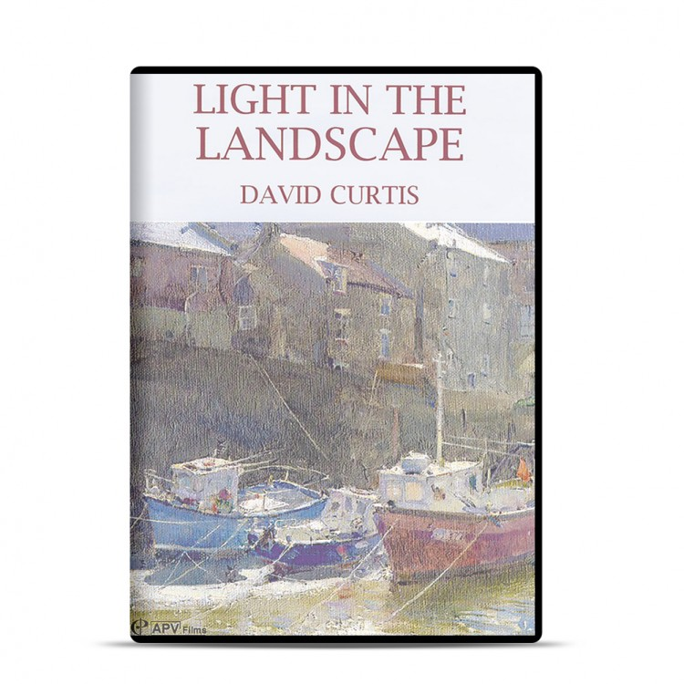 DVD : Light In The Landscape : David Curtis