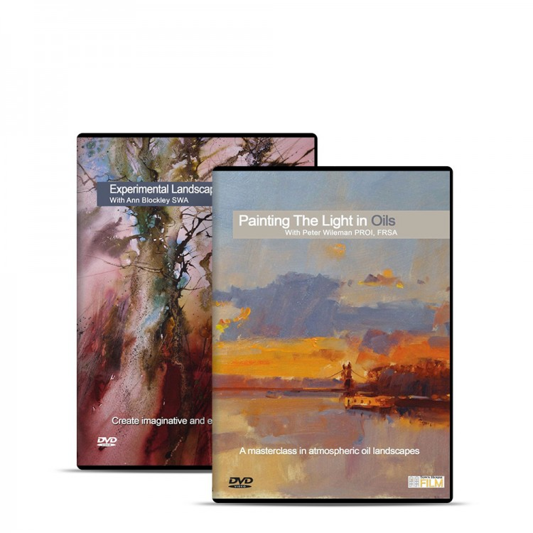 Townhouse DVD : Experimental Landscapes In Watercolour With Ann Blockley SWA