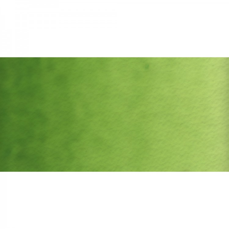 Old Holland : Watercolour Paint : 18ml : Permanent Green